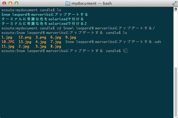 mydocument_—_bash