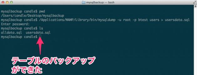 mysqlbackup_—_bash-2 2