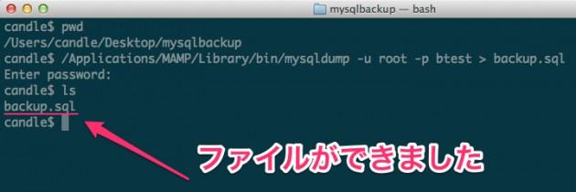 mysqlbackup_—_bash-8