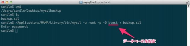 mysqlbackup_—_bash-9